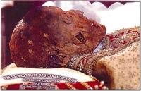 Francis Xavier's head