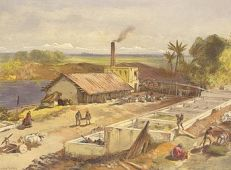 Indigo factory in Bengal in 1867.