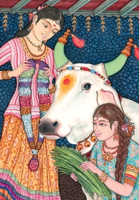 The Indian Cow