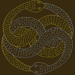 Dream Symbol: Snakes