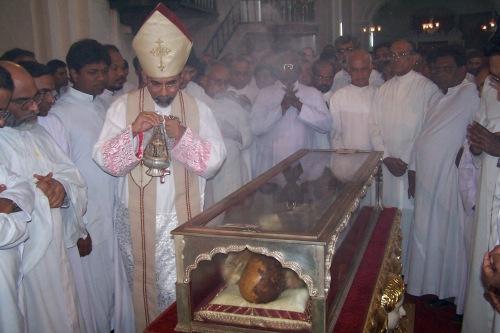 Francis Xavier SJ