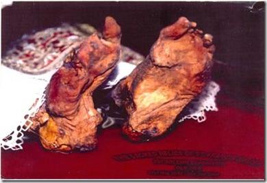 Francis Xavier's feet