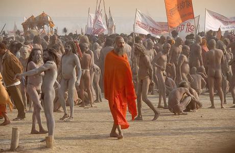 Dasanami sannyasi and Naga sadhus