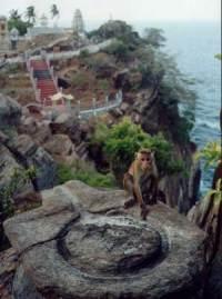 Swami Rock, Trincomalee