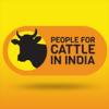 People for Cattle in India