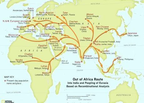 Human migration out of Africa to India and then to Europe.