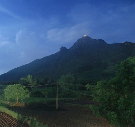 Kartigai Deepam on Arunachala Hill at Tiruvannamalai
