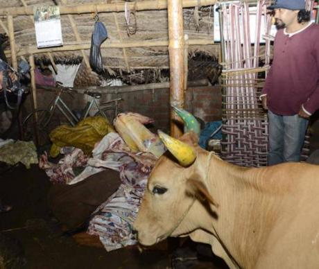 Unlicensed slaughter house in Chennai.