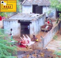 Illegal slaughter house in Chromepet near Chennai.