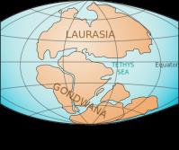 Laurasia & Gondwana Continents