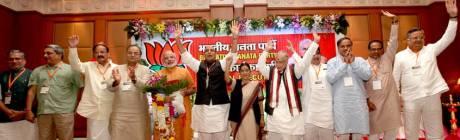 BJP's National Executive