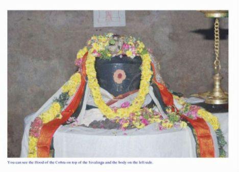 Cobra offering bilva leaves to lingam - 3