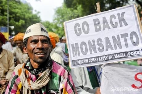 Farmers protest against Monsanto in New Delhi 2013