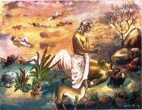 Yudhishthira and Dog
