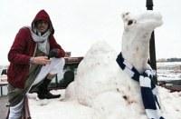 Saudi & Snow Camel
