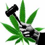 Marijuana Regulation