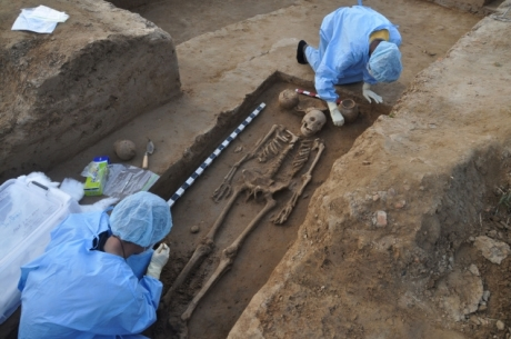 Archaeologists and scientists of Deccan College, Pune, examining a full-length skeleton of a male excavated from a Harappan burial site in Rakhigarhi in March. Photo: Deccan College, Pune
