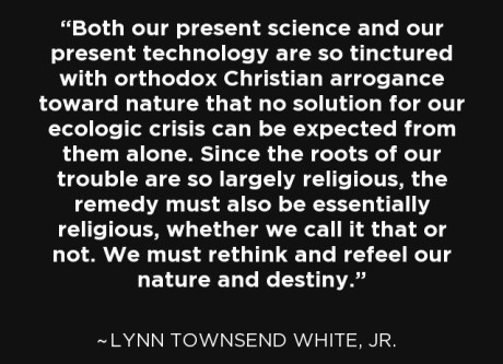 Prof Lynn Townsend White Jr
