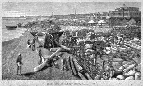 Grain destined for export stacked in Madras beaches (February 1877)