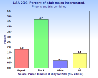 Percent of adult males incarcerated by race and ethnicity (2009).