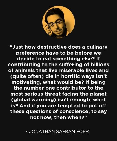 Jonathan Safran Foer Quote