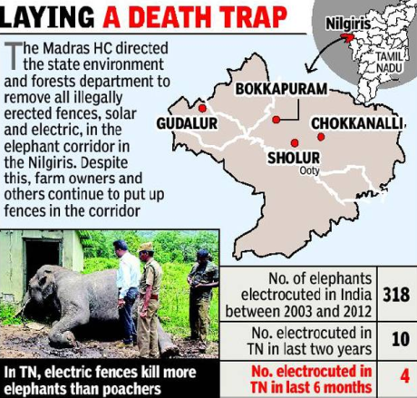 Elephants killed by electric fences in Tamil Nadu (2015)