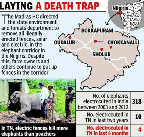 Elephants killed by electric fences in Tamil Nadu (2015)
