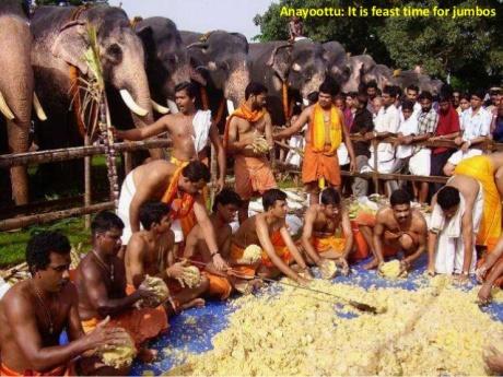 Guruvayur temple elephant feast