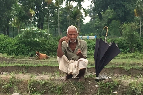 West Bengal Paddy Farmer