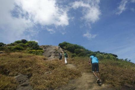 Agasthyarkoodam Hill
